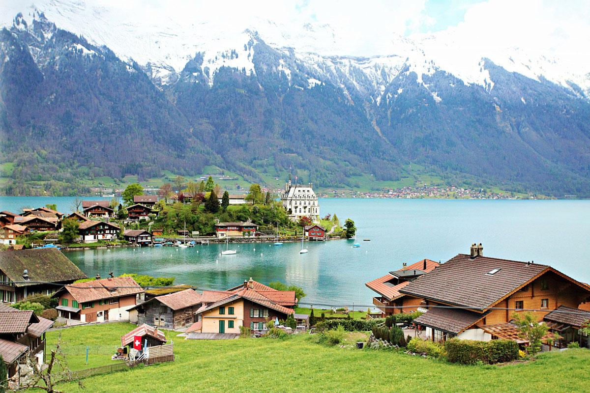 viver-suica